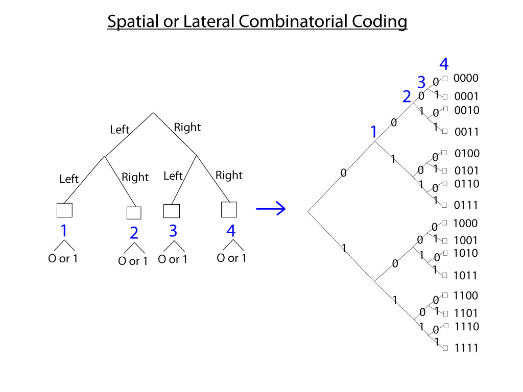 4dh Spatial-Combinatorial-Coding.jpg
