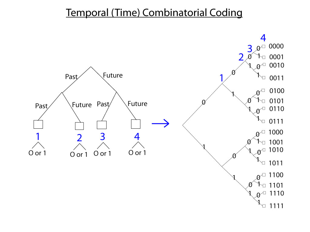 4di Temporal-Combinatorial-Coding.jpg